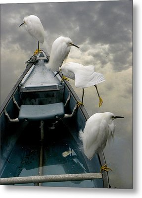 Birds Boat And Beyond Metal Print by Henry Murray