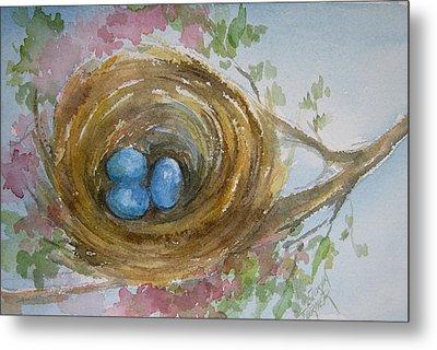 Birds Eggs In A Nest Metal Print by Gloria Turner