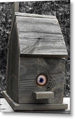 Birds Eye View Metal Print by Kristie  Bonnewell