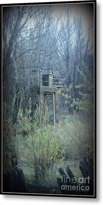 Bird's Haven In The Fall Metal Print