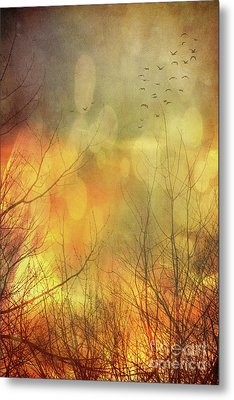 Birds In Flight At Sunset Metal Print by Sandra Cunningham