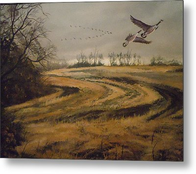 Birds In The Autumn Metal Print by James Guentner