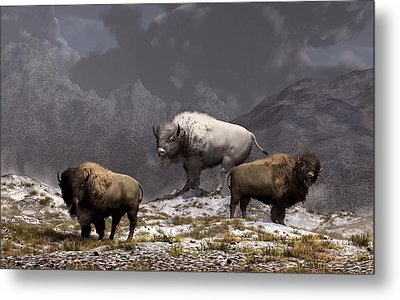 Bison King Metal Print by Daniel Eskridge