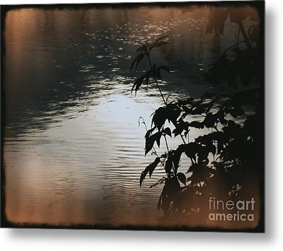 Black Bamboo Metal Print by Angela Wright