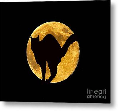 Black Cat Moon Metal Print