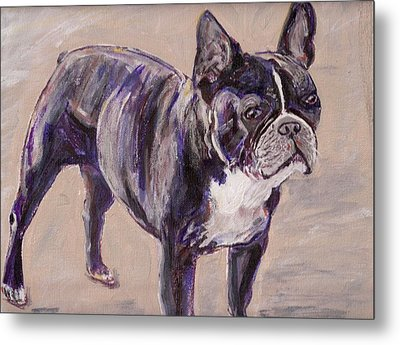 Black Frenchie Metal Print
