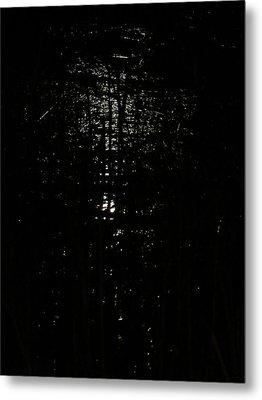 Black Night Metal Print