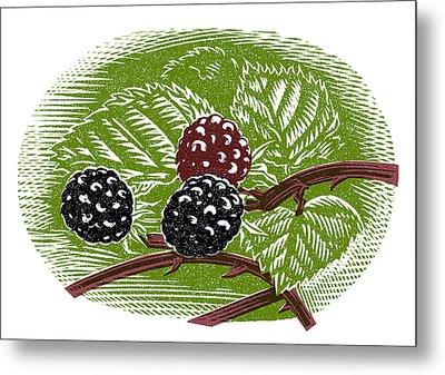 Blackberries, Woodcut Metal Print by Gary Hincks
