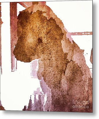 Blind Dog Winston Metal Print by Christine Segalas