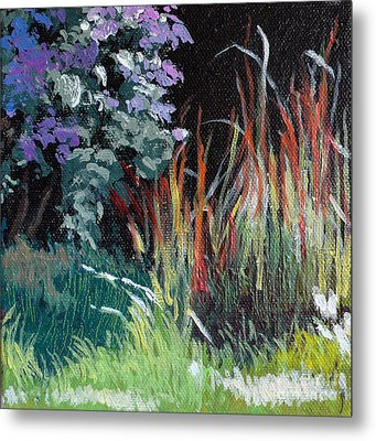 Bloodgrass And Asters Metal Print by Melody Cleary