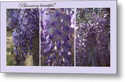 Blooming Beautiful Metal Print by Taschja Hattingh
