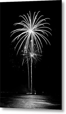 Blooming In Black And White Metal Print by Bill Pevlor