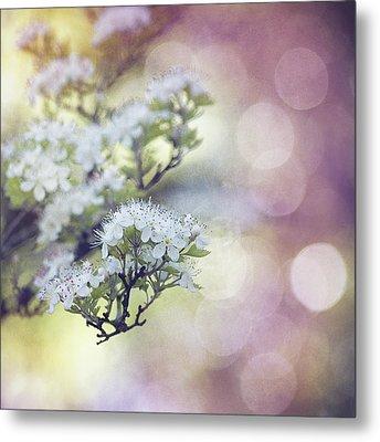 Blossom Metal Print by Joel Olives