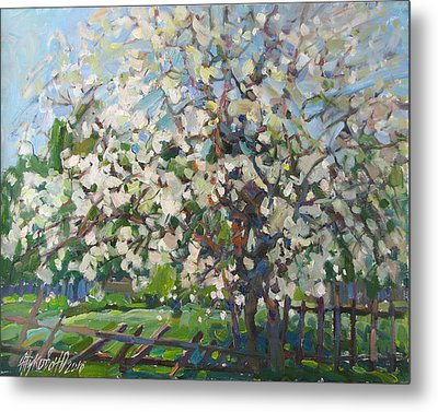 Blossoming Apple Tree Metal Print by Juliya Zhukova