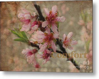Metal Print featuring the photograph Blossoms by Tamera James