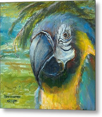 Blue And Gold Macaw By The Sea Metal Print by Bernadette Krupa