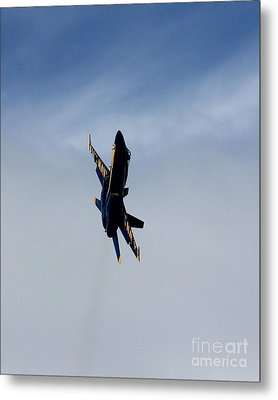 Metal Print featuring the photograph Blue Angel Solo by Alex Esguerra