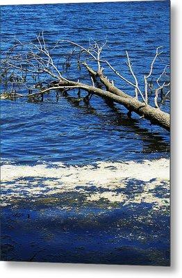 Blue Blue Water Metal Print by Todd Sherlock