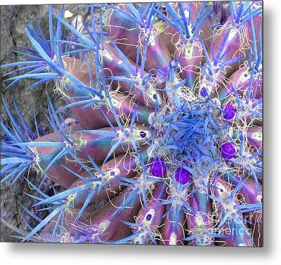 Blue Cactus Metal Print by Rebecca Margraf
