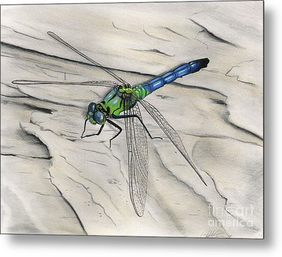 Blue-green Dragonfly Metal Print