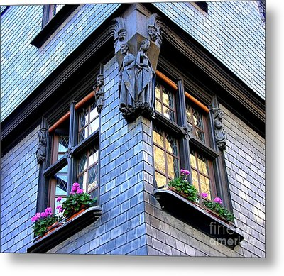 Blue In The Morning Metal Print by Anne Gordon