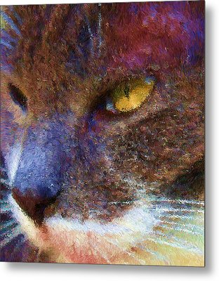 Blue Kitty Metal Print by Rachel Hames