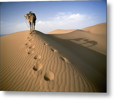 Blue Man Tribe Of Saharan Traders With Metal Print by Axiom Photographic