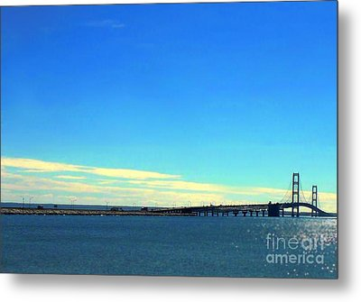 Metal Print featuring the photograph Blue Meets Blue by Lin Haring