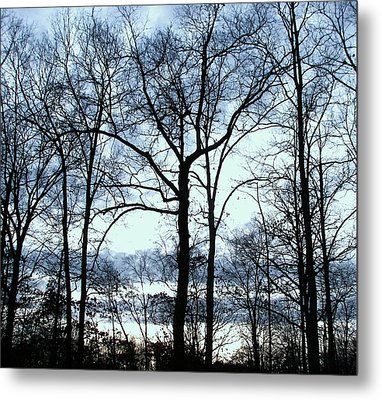 Metal Print featuring the photograph Blue Mirage by Pamela Hyde Wilson