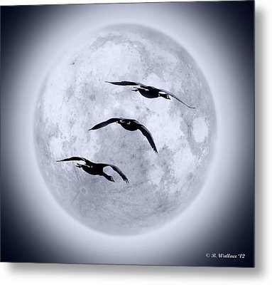 Blue Moon Geese Metal Print by Brian Wallace