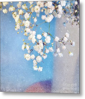 Blue Morning Metal Print by Lyn Randle