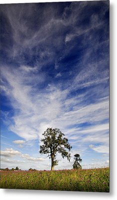 Metal Print featuring the photograph Blue Skies Smiling At Me  by John Chivers
