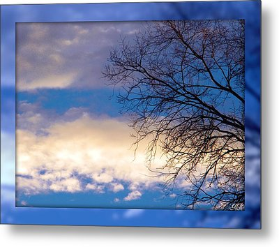 Blue Sky Metal Print by Michelle Frizzell-Thompson
