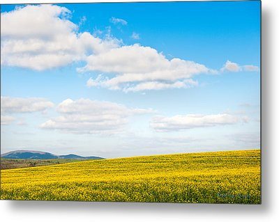 Blue Sky With White Clouds Metal Print by Johnny Sandaire