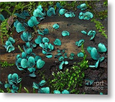 Blue Stain Metal Print
