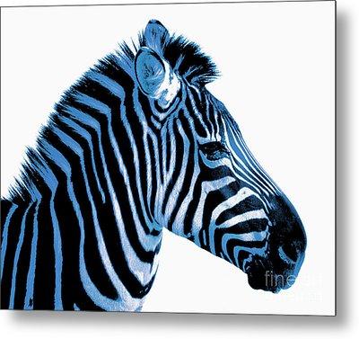 Blue Zebra Art Metal Print