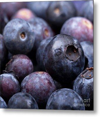 Blueberry Background Metal Print