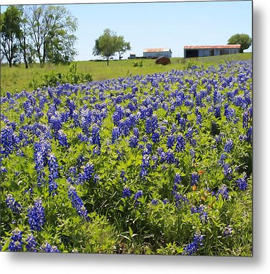 Bluebonnet Farmhouse Metal Print by Lynnette Johns