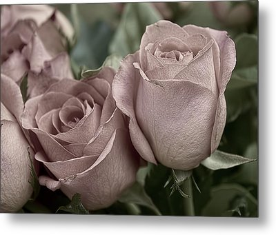 Metal Print featuring the photograph Blushed Rose by Kathleen Holley