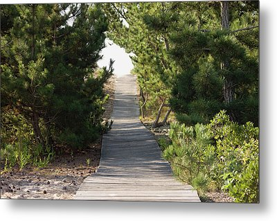 Boardwalk Footpath To The Beach. Metal Print by Schedivy Pictures Inc.