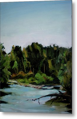 Boise River From Greenbelt Metal Print