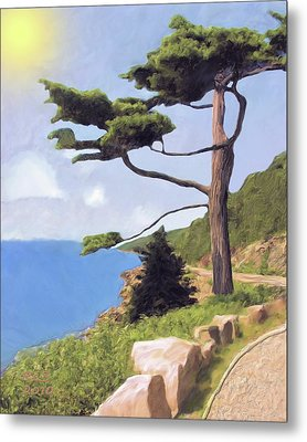 Boothbay Pine Metal Print by Richard Stevens