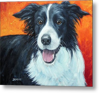 Border Collie On Red Metal Print by Dottie Dracos