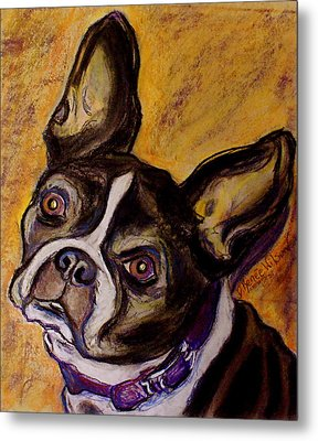 Metal Print featuring the painting Boston Terrier by D Renee Wilson