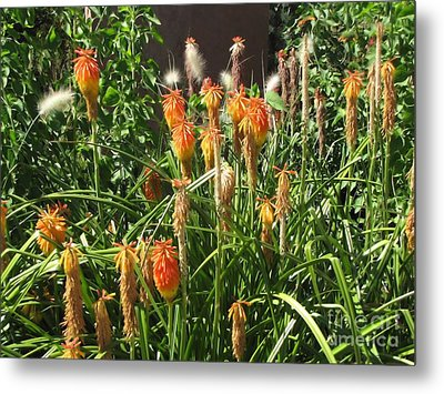 Botanic Dreams Metal Print by Michelle H