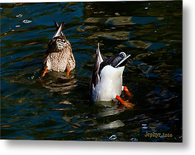 Bottoms Up Metal Print by Jephyr Art