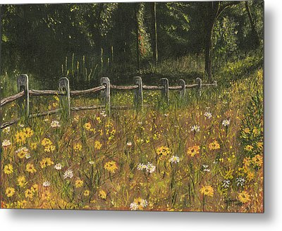 boundary fence Swan Lake NY Metal Print by Stuart B Yaeger
