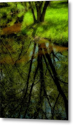 Branches Of Life Reflects Metal Print by Karol Livote