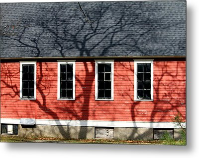 Metal Print featuring the photograph Branching Out by Mark J Seefeldt