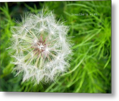 Metal Print featuring the photograph Breathe A Wish by Robin Dickinson